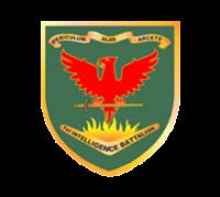 Spanner Club 1 Intelligence Battalion Gallipoli Barracks Enoggera